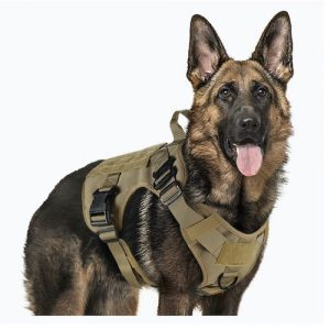 Black Gun Owners Association - Tactical Vest Dog Harness